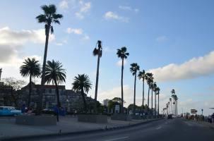 Beautiful drive in Havana